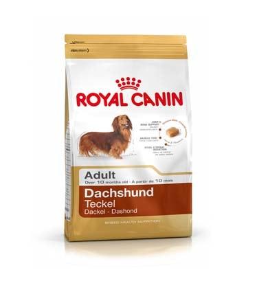 Royal Canin Dachshund Adult - 500 gm