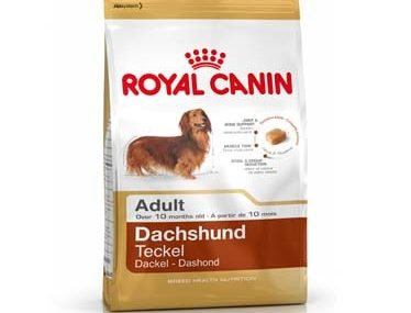 Royal Canin Dachshund Adult - 500 gm