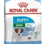 Royal Canin Mini Junior - 800 Gms