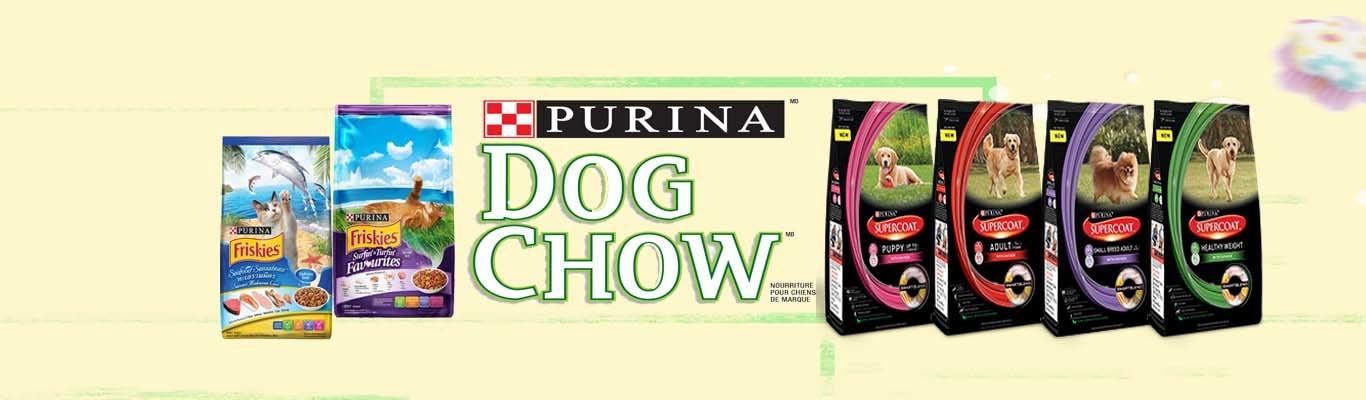 dog food online asiapets