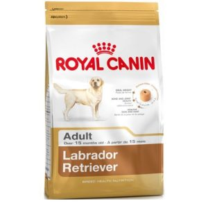 Royal Canin Labrador Adult Dog Food 12 Kg