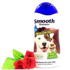 BBN Passion Fruit Smooth Shampoo 500ml