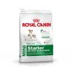 Royal Canin Mini Starter 3 Kg