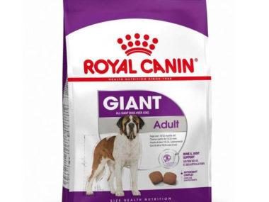 Royal Canin Giant Adult 4kg / 15Kg dog food