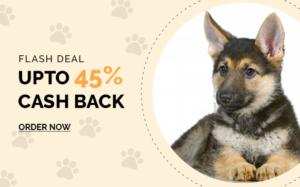 Online pet shop in India